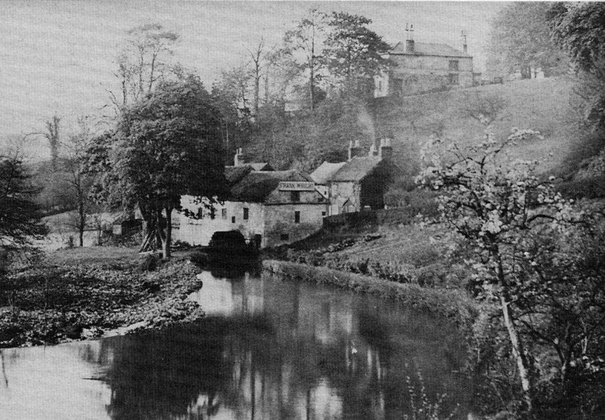 Frank Wright's Mill
